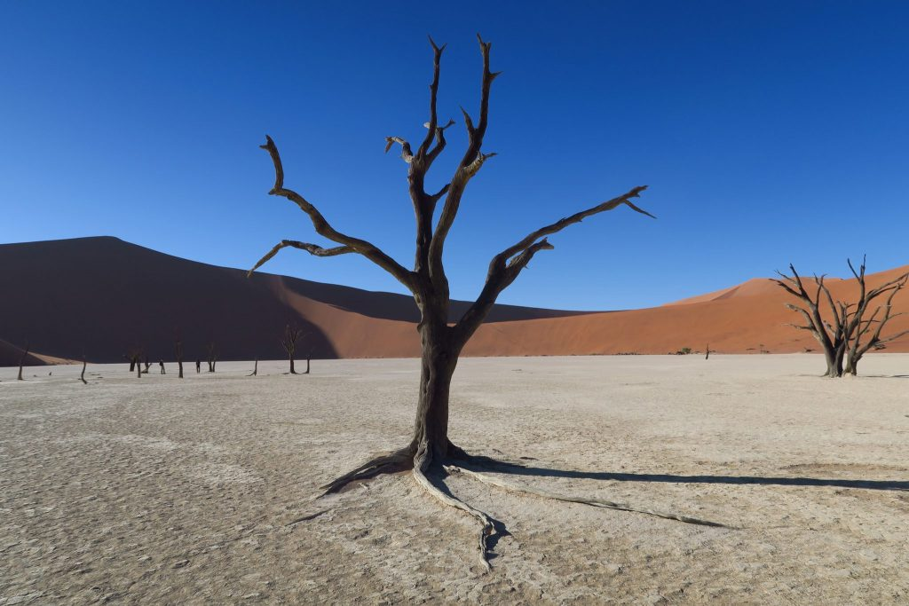 Read This Guide To Avoid Disaster Before Travelling To Sossusvlei Namibia